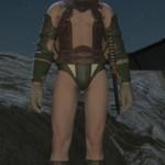 gladiator_subligar