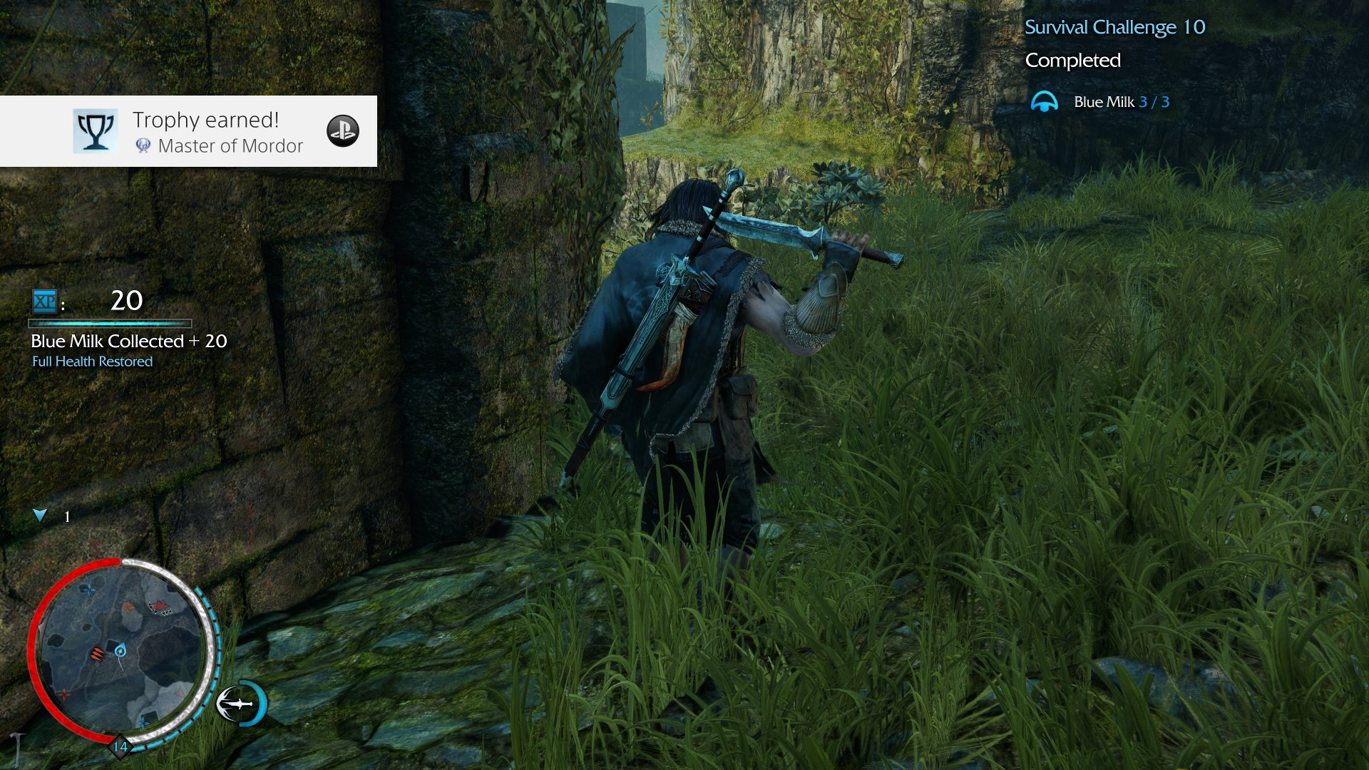 Thoughts on trophy hunting in Shadow of Mordor